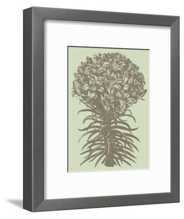 Lilies 11-Botanical Series-Framed Art Print