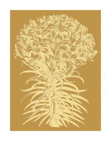 https://imgc.artprintimages.com/img/print/lilies-20_u-l-f8cy1n0.jpg?p=0