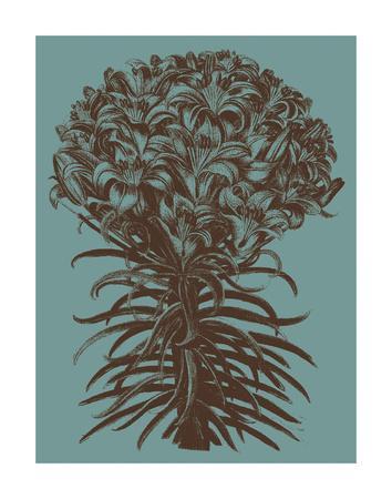https://imgc.artprintimages.com/img/print/lilies-5_u-l-f8cy6i0.jpg?p=0