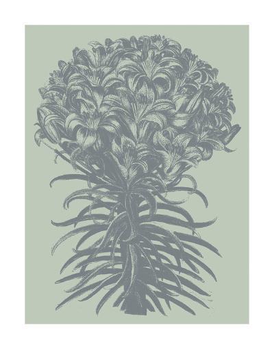 Lilies 8-Botanical Series-Art Print