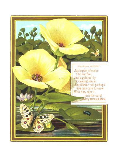 Lilies and Lily Pads with Insects--Art Print