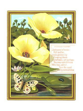 Lilies and Lily Pads with Insects