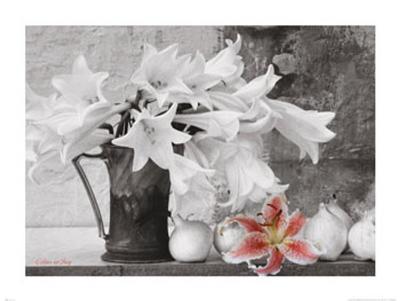 Lilies in Jug--Art Print