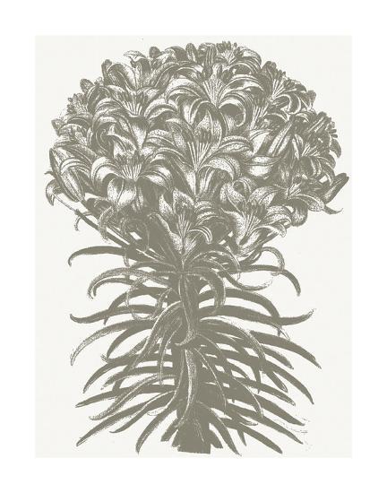 Lilies (Ivory & Burlap)-Botanical Series-Art Print