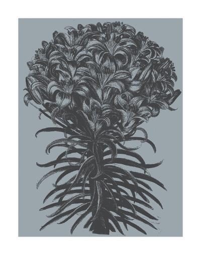 Lilies (Slate & Ink)-Botanical Series-Art Print