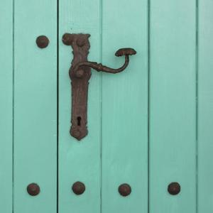 Rustic Turquoise Details II by Lillian Bell