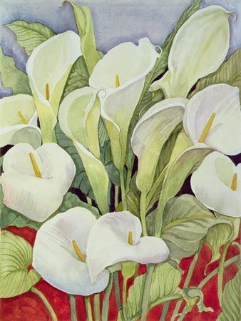 Arum Lillies, 1978