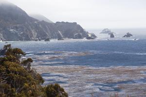 Big Sur 4 by Lillis Werder