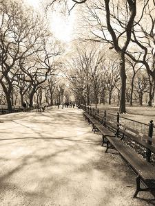 Central Park 1 by Lillis Werder