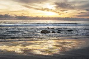 Coronado Beach 2 by Lillis Werder