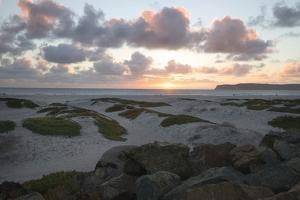 Coronado Beach Dusk by Lillis Werder