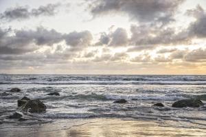 Coronado Ocean by Lillis Werder