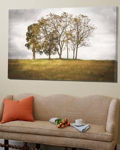 Three Trees by Lillis Werder