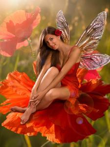 Brunette Girl Elf with  is Sitting on a Flower Poppy by Lilun
