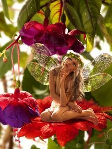 The Little Elf On A Flower In A Fairy Garden by Lilun