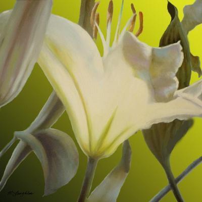 https://imgc.artprintimages.com/img/print/lily-green_u-l-q1b7lq60.jpg?p=0