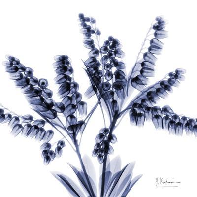https://imgc.artprintimages.com/img/print/lily-of-the-valley-bush_u-l-pyjpno0.jpg?p=0