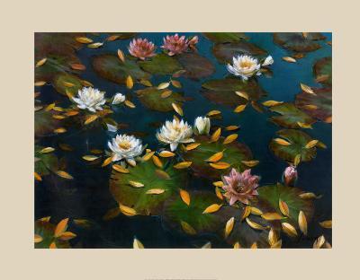 Lily Pad II-Elise Lunden-Art Print