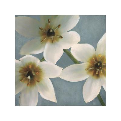Lily Parfait I-Janel Pahl-Giclee Print