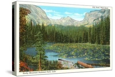 Lily Pond, Wild Basin, Colorado