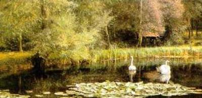 Lily Pond-E. R. Taylor-Art Print