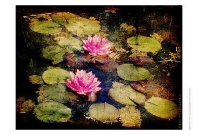 Lily Ponds I-Robert Mcclintock-Art Print