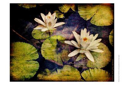 Lily Ponds V-Robert Mcclintock-Art Print