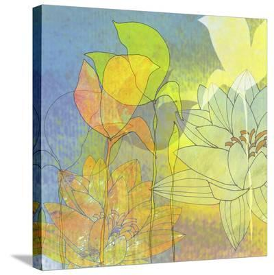 Lily Shadows-Jan Weiss-Stretched Canvas Print