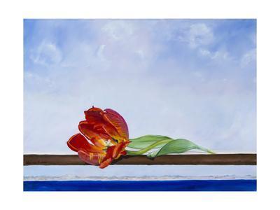 Tulip at Sea
