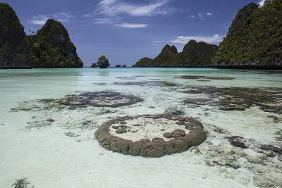 Limestone Islands Surround Corals in a Lagoon in Raja Ampat-Stocktrek Images-Photographic Print