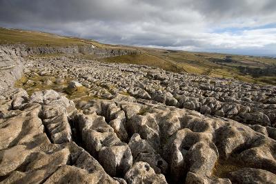 Limestone Pavement, Yorkshire-Bob Gibbons-Photographic Print