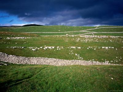 Limestone 'Pavements', Dry Stone Walls and Moody Skies, All Characteristics of the Dales-David Else-Photographic Print