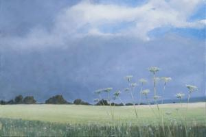 Cow Parsley, 2012 by Lincoln Seligman