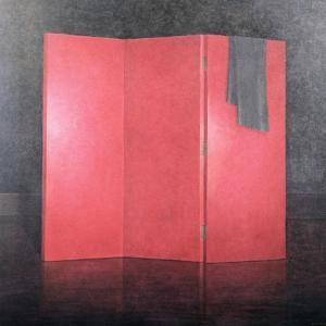 Red Screen, 2005 by Lincoln Seligman