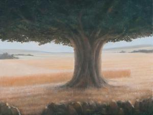 Tree, Holwell, 2012 by Lincoln Seligman