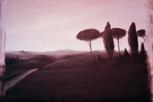 Tuscan Landscape, 1992 by Lincoln Seligman