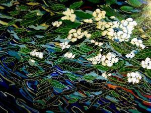 Flowers in stream by Linda Arthurs