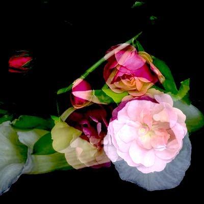 MY MUM'S FLOWER