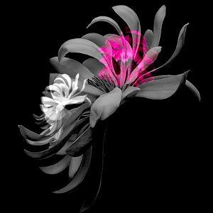 SPRING FLOWER COLLAGE by Linda Arthurs