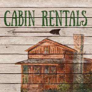 Camping Rentals II by Linda Baliko