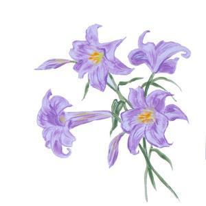 Floral III by Linda Baliko
