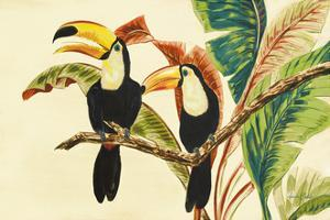 Tropical Toucans I by Linda Baliko