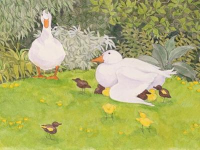 Ducks and Ducklings by Linda Benton