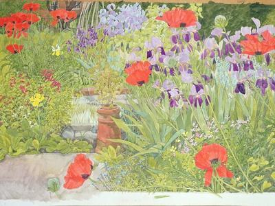 Poppies and Irises Near the Pond