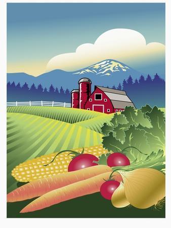 Country Vegetable Farm