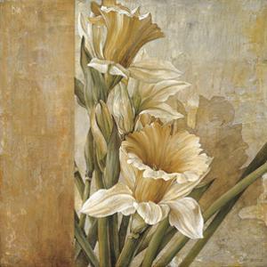 Champagne Daffodils II by Linda Thompson
