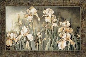 Field of Irises by Linda Thompson
