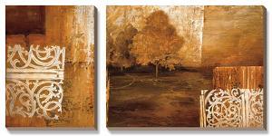 Nature's Boundaries II by Linda Thompson