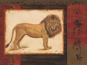 Savanna Lion by Linda Wacaster