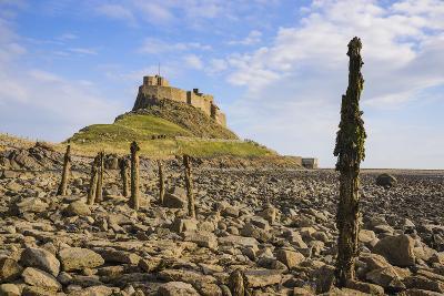 Lindisfarne Castle, Holy Island, Northumberland, England, United Kingdom, Europe-Gary Cook-Photographic Print